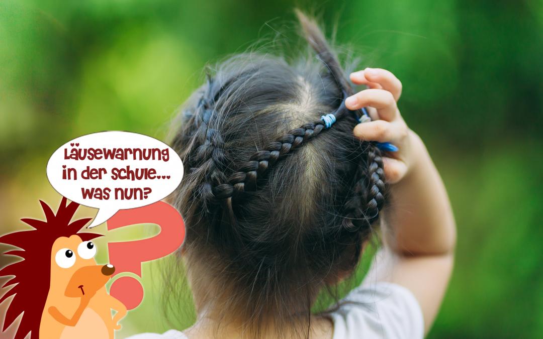 Pflasterpass® -Kopflauswarnung in der Schule/Kindergarten